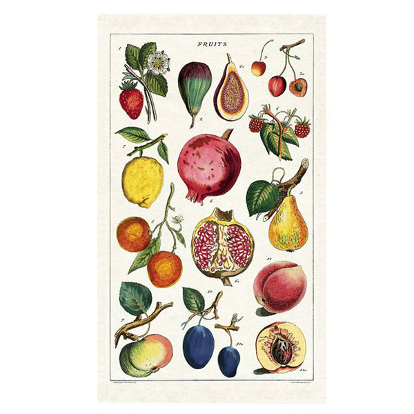 Fruits Tea Towel - City Bird
