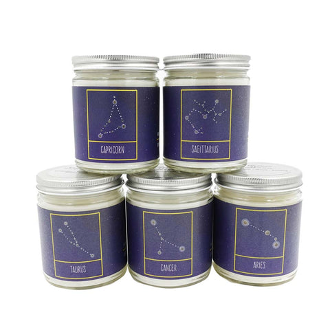 JKM 9oz Candle - Celestial Collection - City Bird
