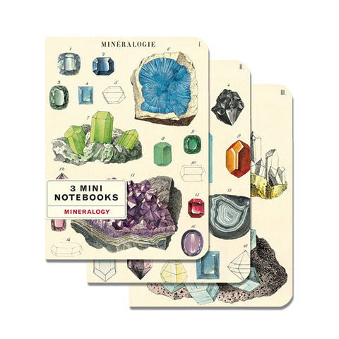 Mineralogy - 3 Mini Notebooks - City Bird