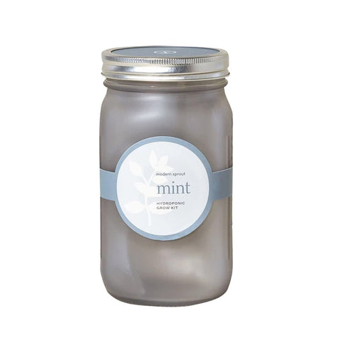 Mint Garden Jar Planter Kit