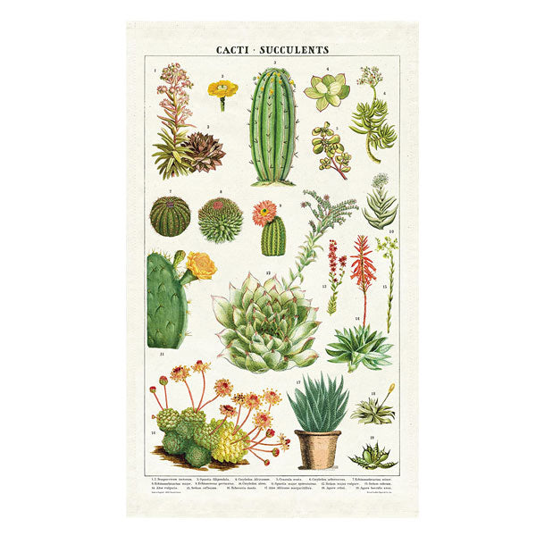 Succulents Tea Towel - City Bird