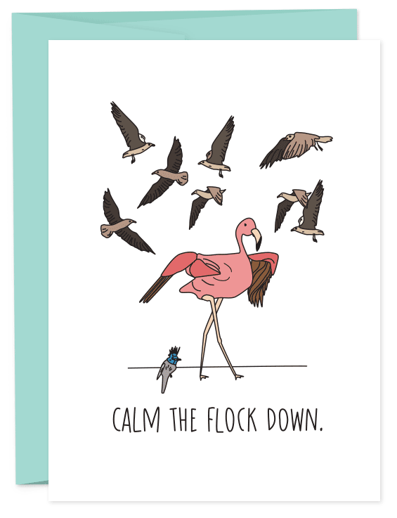 Calm the Flock Down
