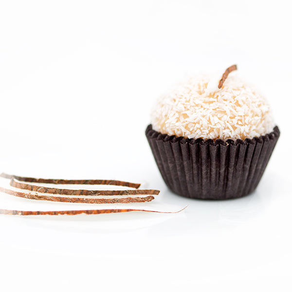 ... coconut brigadeiro of fresh coconut with a layer of shredded coconut
