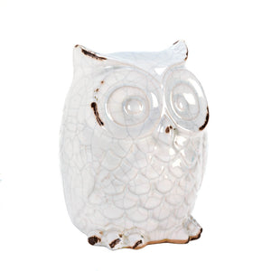 Accent Plus Distressed White Owl Figurine - 10015684