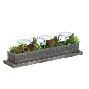 Accent Plus Reclaimed Wood Succulent Candle Display - 10017835