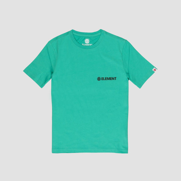 Element Blazin Chest Tee Mint - Kids