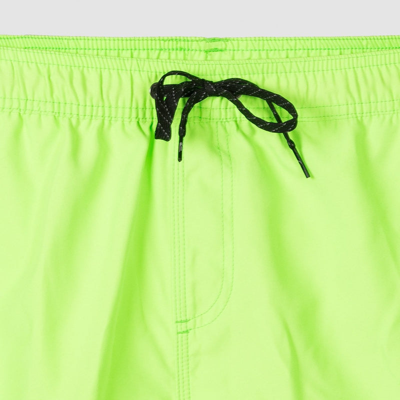 Quiksilver Everyday 15 Swim Shorts Green Gecko - Clothing