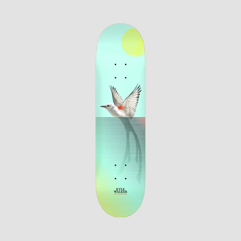 Real Kyle Walker Segment II Deck - 8.38""