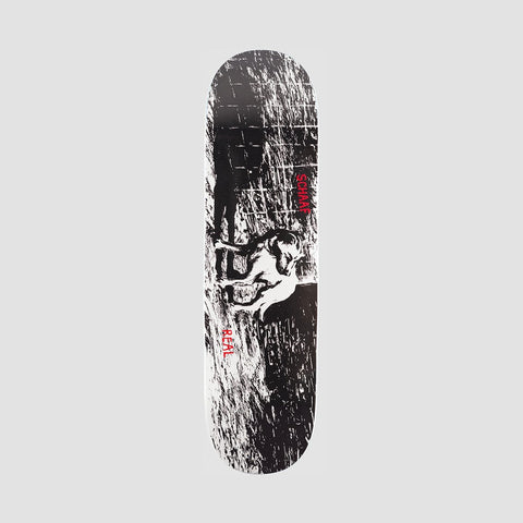 Real Max Shaaf Canines Full SE Deck - 8.5""