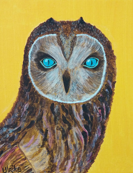 Ulrike Greeting Card • Blue Eyed Owl