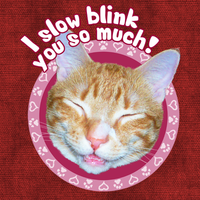 I Slow Blink You So Much!