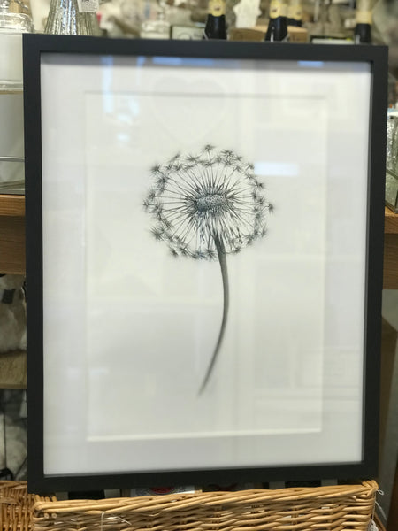 Limited Edition Black & White Dandelion Print Only