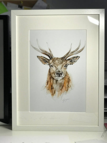 Limited Edition Colour Stag Print Only