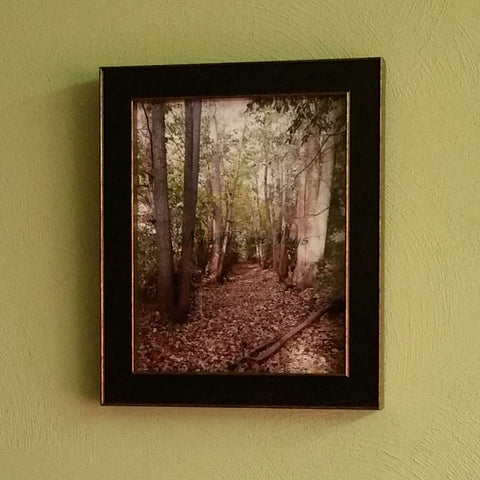 "Photo Print--Framed--8"" x 10""--Water Allee"