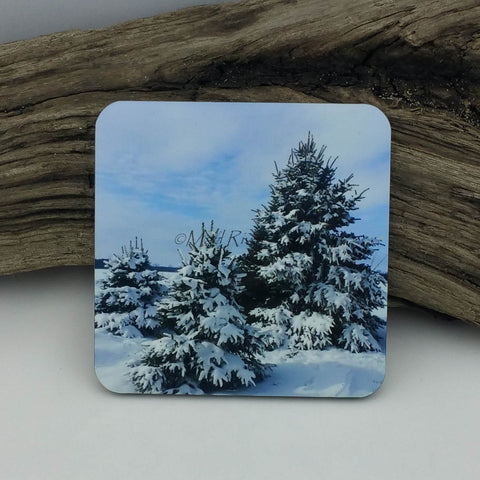 Coaster--Photo Print--Cork--Spruce In Snow