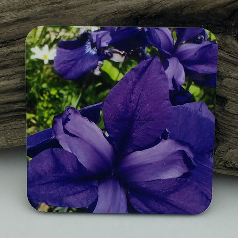 Coaster--Photo Print--Cork--Purple Iris