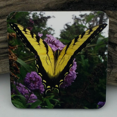 Coaster--Photo Print--Cork--Eastern Tiger Swallowtail Butterfly