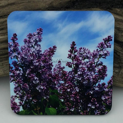 Coaster--Photo Print--Cork--Common Lilac