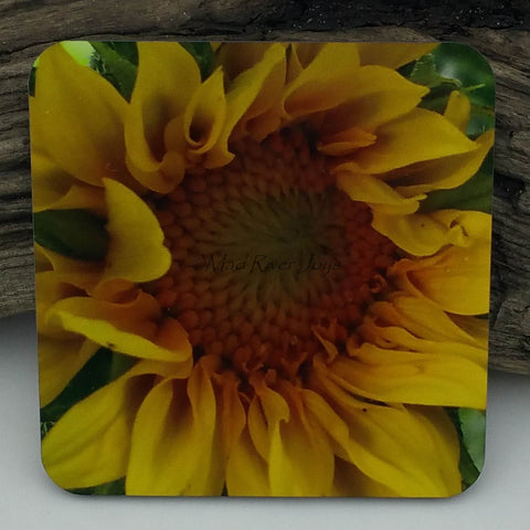 Coaster--Photo Print--Cork--Sunflower