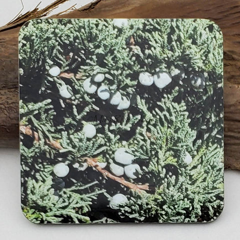 Coaster--Photo Print--Cork--Blue Rug Juniper