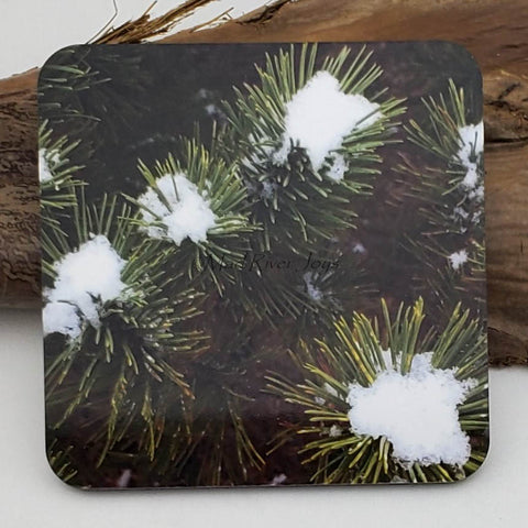 Coaster--Photo Print--Cork--Snow on the Mugo
