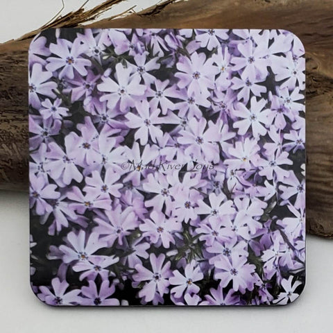 Coaster--Photo Print--Cork--Lavender Creeping Phlox