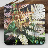 Coaster--Photo Print--Cork--Japanese Autumn Fern