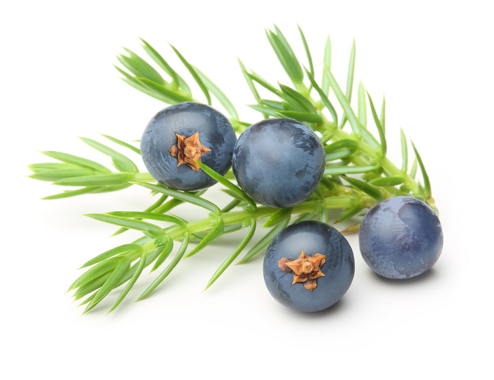 Juniper Berry - By Faith Essential Oils