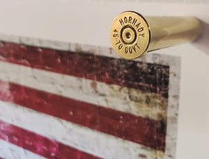45-70 Government Brass magnets - Close Up