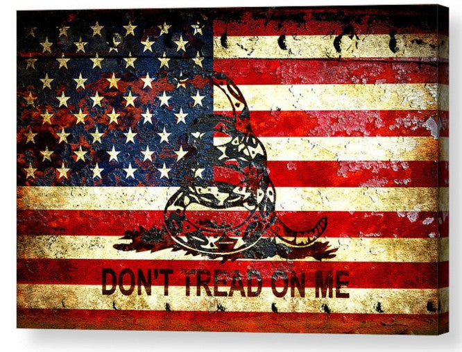Print of American Flag And Viper On Rusted Metal Door - Don't Tread On Me!