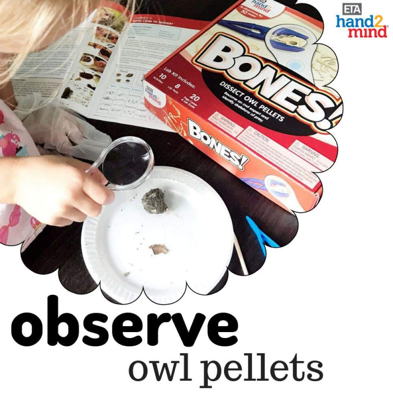 ETA hand2mind Bones! Science Kit For Kids, Dissect Owl Pellets, 10 Stem Experiments & Activities on Animal Biology, Gift for Girls & Boys, Children & Teens, Educational, STEM Authenticated