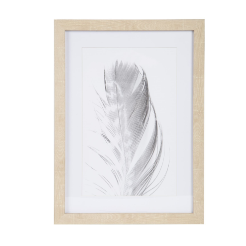 ALBI| Black Feather Wall Décor