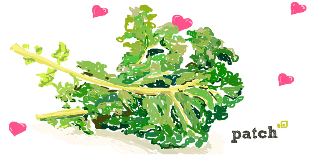 How to Grow Kale for Stronger Bones