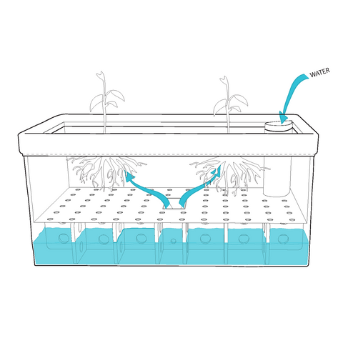 self watering technolog