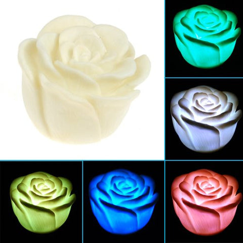 7 color changing rose