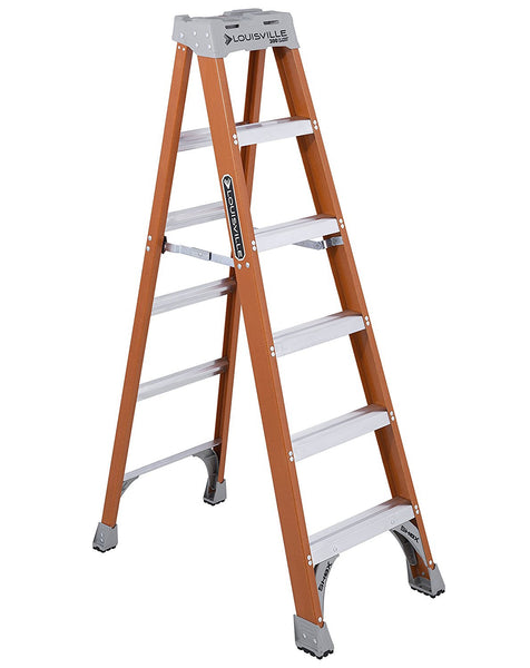6 foot Louisville Ladder