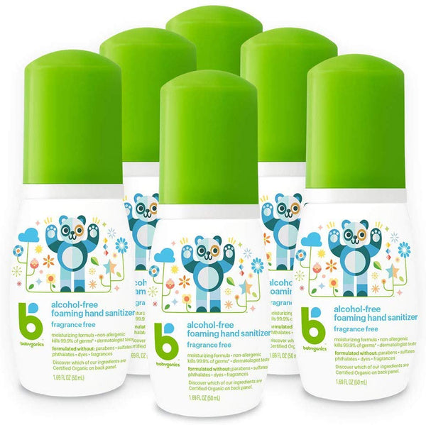 6 Babyganics Alcohol-Free Foaming Hand Sanitizer