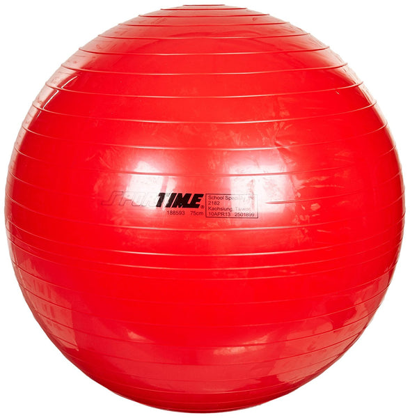 Therapy and Exercise Ball