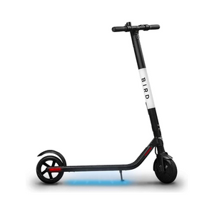 Bird ES1-300 Electric Scooter with 300 Watt Motor and Digital LED Display, Black (Renewed)