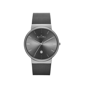 Skagen Men's Stainless Steel and Mesh Watch