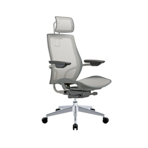 Humanspine Office Chair (2 Colors)