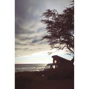 Van Camping on a Hawaii Beach Wood Print
