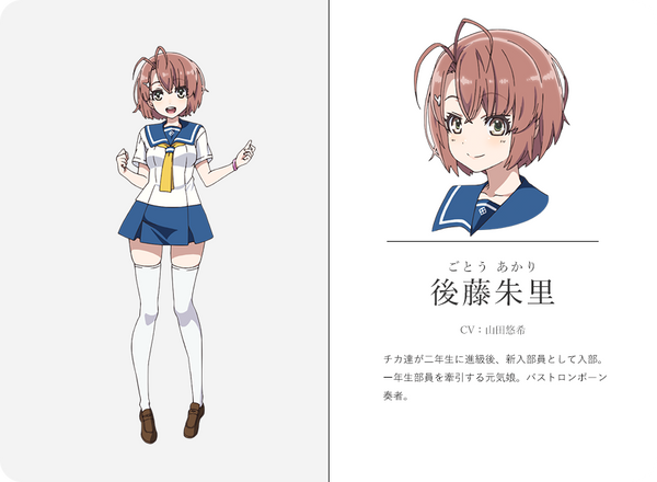 Custom Tailor Made Cosplay Costume Inspired by Akari Gotou from Haruta & Chika