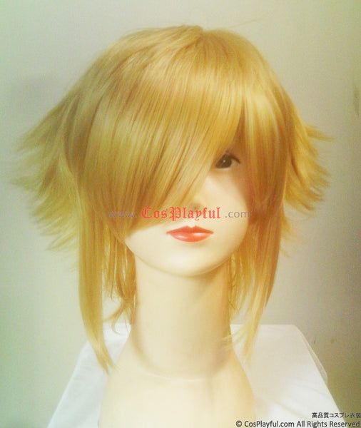 Inspired by BlazBlue Jin Kisaragi Cosplay Wig