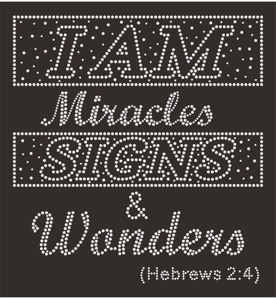 I Am Miracles, Signs, and Wonders