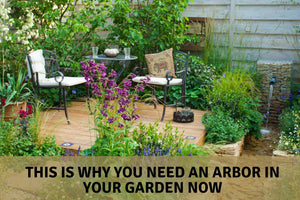 This is Why You Need an Arbor in Your Garden Now