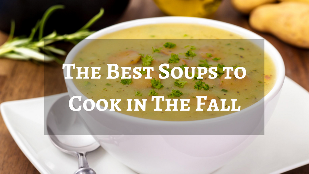 The Best Soups to Cook in The Fall
