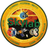 Skylab Program Commemorative Patch