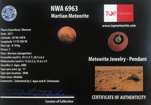 Mars Meteorite Pendant with Mars Meteorite granules. Comes with COA - The Space Store