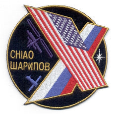Expedition 10 Mission Patch